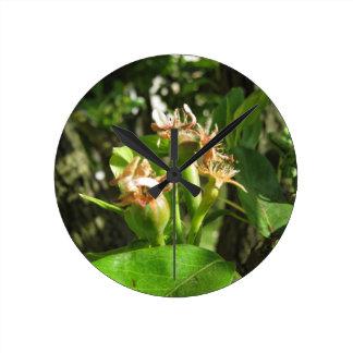 Reloj Redondo Mediano Ramita del peral con los brotes en la primavera