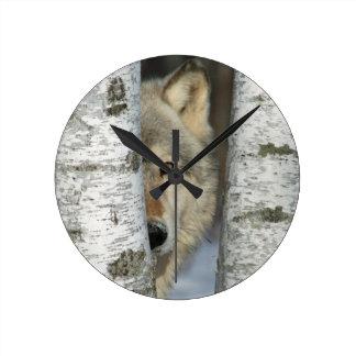 Reloj Redondo Mediano Registre con la foto del lobo gris en algunos
