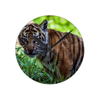 Reloj Redondo Mediano Tigre Cub de Sumatran de los alquileres