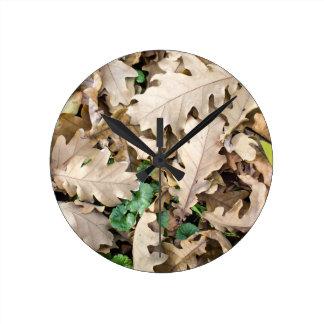 Reloj Redondo Mediano Vista superior de las hojas caidas del roble