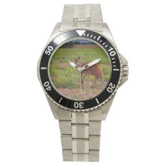 Reloj rojo australiano del canguro