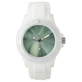 Reloj suculento verde