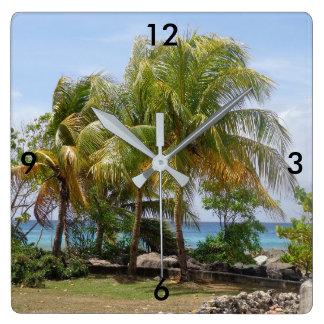 Reloj tropical de la palmera