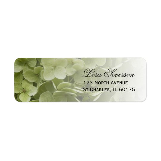 Remite floral del Hydrangea verde de Annabelle Etiqueta De Remitente