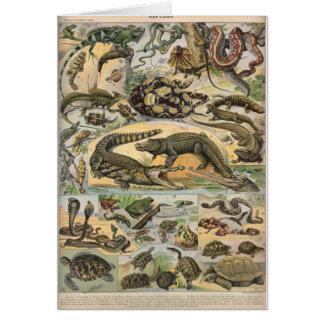 Reptiles Tarjeta