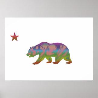 República colorida del oso póster