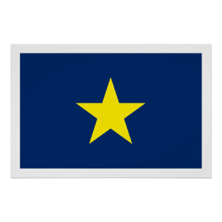 República de Tejas Póster