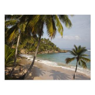República Dominicana, costa del norte, Abreu, Postal