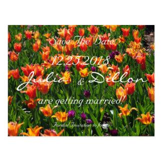 Reserva anaranjada del jardín la fecha postal