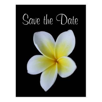 Reserva del Frangipani la invitación del boda de Postal