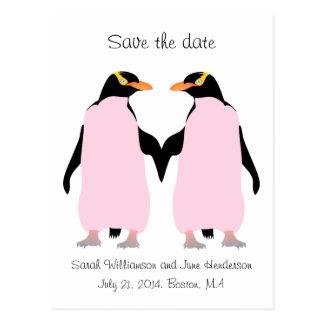 Reserva del gay la fecha, pingüinos rosados postal