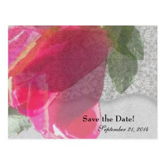 Reserva elegante del capullo de rosa del damasco postal