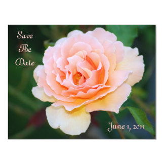 Reserva perfecta del rosa de la imagen la fecha invitación 10,8 x 13,9 cm