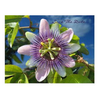 Reserva púrpura de la pasión la postal de la fecha
