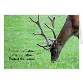 ¡Respete la naturaleza! Tarjeta