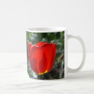 Resplandor interno taza de café