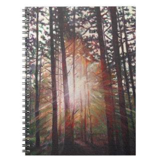 Resplandor solar 2010 cuadernos