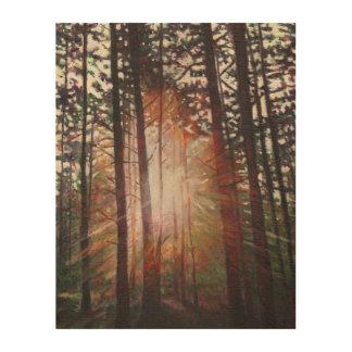 Resplandor solar 2010 cuadros de madera