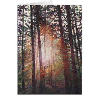 Resplandor solar 2010 tarjeta de felicitación