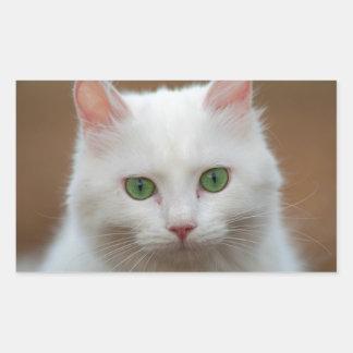 Retrato blanco de ojos verdes hermoso del gato pegatina rectangular