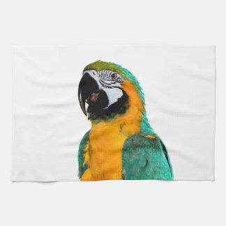 retrato colorido del pájaro del loro del macaw del paño de cocina