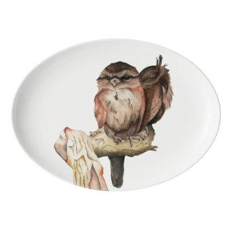 Retrato de la acuarela de los hermanos del búho fuente de porcelana