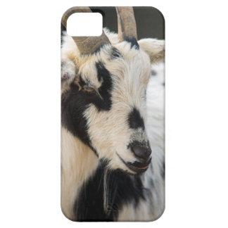 Retrato de la cabra funda para iPhone SE/5/5s