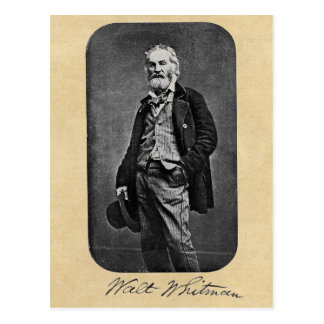 Retrato de la edad 41 de Walt Whitman Postal