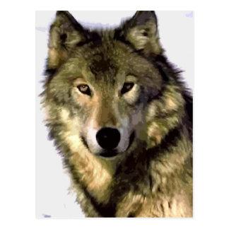 Retrato de la postal del lobo