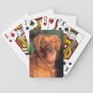 Retrato de un golden retriever baraja de cartas