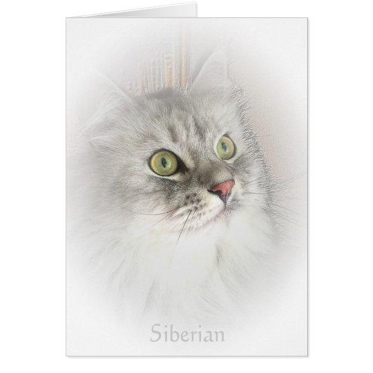 Retrato de una tarjeta siberiana
