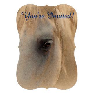 Retrato del caballo blanco anuncios