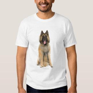 Retrato del estudio del perro de pastor belga camisetas