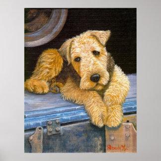 Retrato del perro de Airedale Terrier Póster