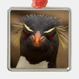 Retrato del pingüino de Rockhopper Adorno Navideño Cuadrado De Metal