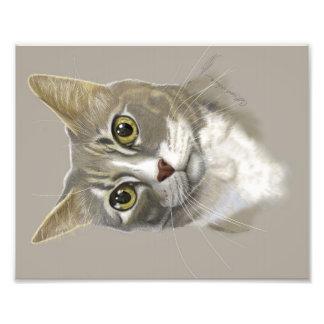 Retrato digital del gato del arte de la impresión fotografias