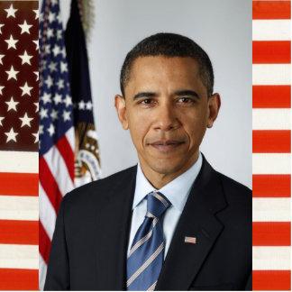 Retrato presidencial de los E E U U del funcionar Escultura Fotografica