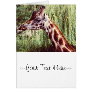 Retrato púrpura de la jirafa, fotografía animal tarjeta