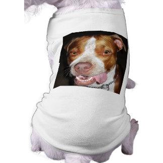 Retrato tonto de Pitbull Ropa De Perros