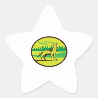 Retro oval del paisaje de la montaña del coyote pegatina en forma de estrella