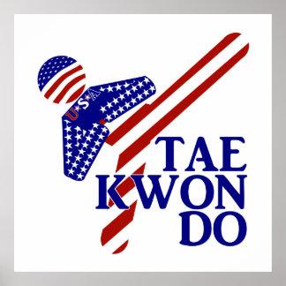 Retroceso de los E.E.U.U. el Taekwondo (1) Póster