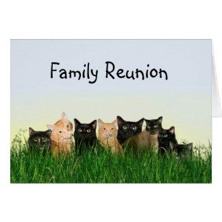 Reunión de familia de gato tarjeton