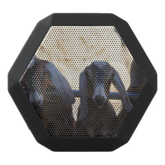 Reunión de la cabra altavoz negro con bluetooth