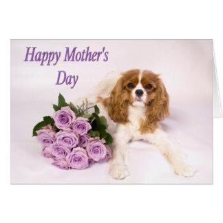 Rey arrogante Dog de los rosas de madre de la Tarjeta De Felicitación