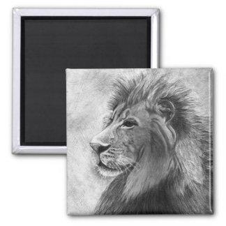 Rey de la selva, león dibujado mano en grafito imán
