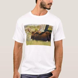 Rey Moose Bull de Teton Camiseta