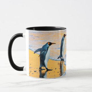 Rey pingüinos en la taza de la salida del sol