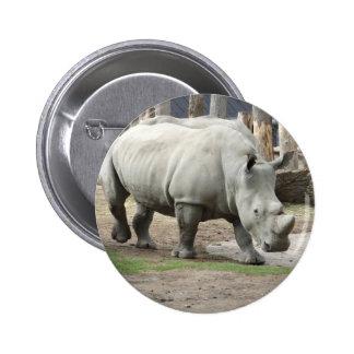 Rhinos blancos septentrionales en peligro pin