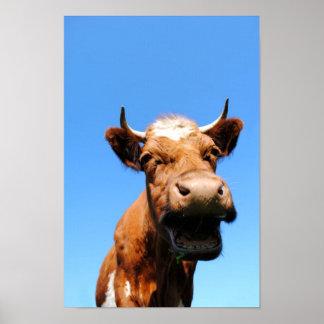 Riendo vaca póster