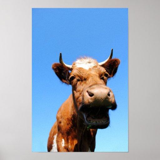 Riendo vaca posters